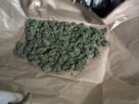 В Удмуртии задержаны подозреваемые в хранении и сбыте марихуаны